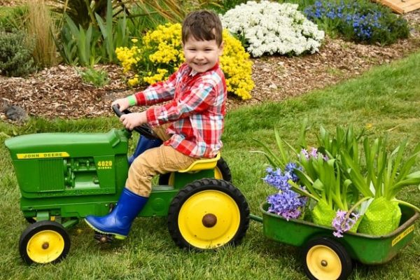 boy on mini tractor pulling plants